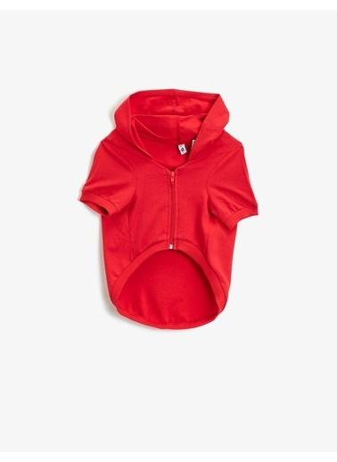 Koton Kapüsonlu Köpek Sweatshirt Kırmızı